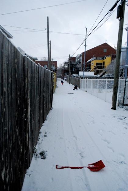 Première neige, 27 novembre 2010
