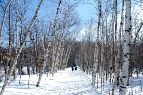 Parc national du mont Saint-Bruno, Montérégie, février 2011.