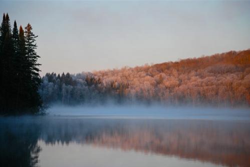 Givre matinal sur les rives du Lac Noir, dans les Laurendides (Rémi Leroux)